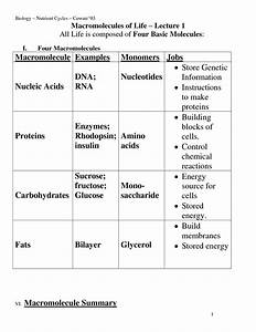 14 Best Images Of Macromolecules Concept Map Worksheet