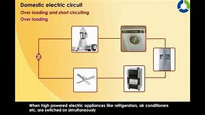Domestic Electric Circuit