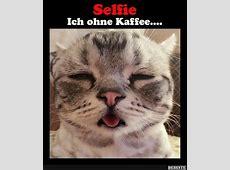 Ich ohne Kaffee Lustige Bilder, Sprüche, Witze, echt