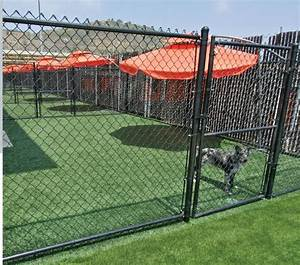 69 best great places for synthetic grass images on With best dog boarding facilities