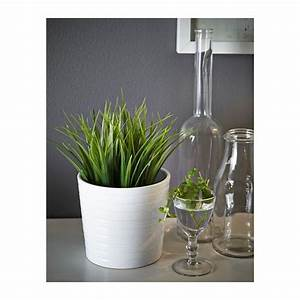 Pot Fleur Ikea : fejka plante artificielle en pot herbe pinterest plantes artificielles artificiel et ikea ~ Teatrodelosmanantiales.com Idées de Décoration