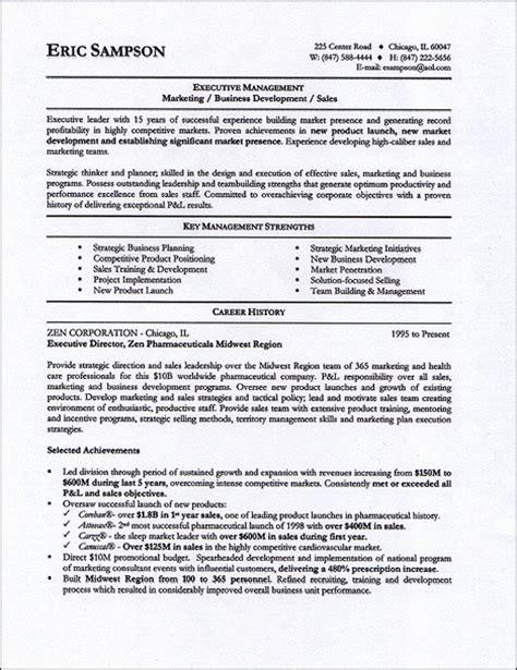 examples of professional profile on resume resume help professional profile ssays for sale
