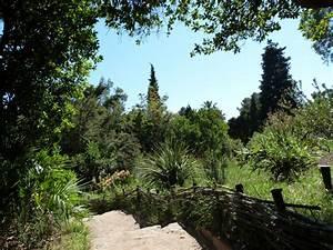 Les Jardins Du Sud : le jardin d 39 afrique du sud domaine du rayol ~ Melissatoandfro.com Idées de Décoration