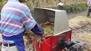 Mechanical Rice Threshing