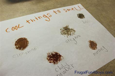 smell activities for preschool a preschool mini unit on the five senses part 1 569