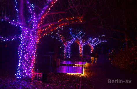 Botanischer Garten Berlin Garden 2017 by Wintertime In Berlin Berlin Av Berichte Fotos Und