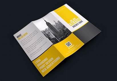 Creative Brochure Fold Tri Corporate Stylish Graphic