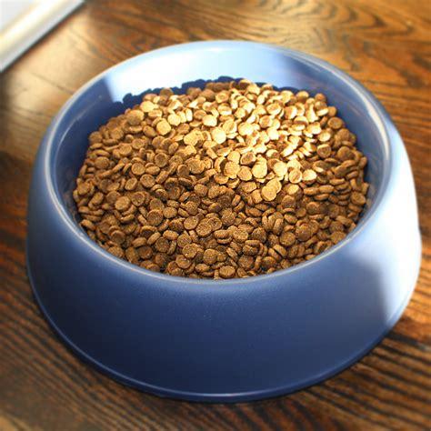 chicken brown rice dog food  pound pet