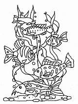 Poisson Coloriage Dessin Avril Colorier Desenhos Coloring Fish Peixes Dibujos Colorare Pesci Pesce Fisch Imprimer Imprimir Colorear Disegno Pescado Disegni sketch template