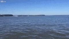Potomac River Boat Crash by Motor Boat Crash Gif Impremedia Net
