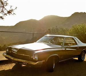 Find Used 1973 Buick Century Luxus Coupe 2