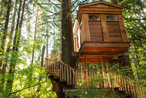 Of The Most Amazing Treehouses In The World