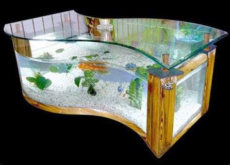 aquarium bureau image result for http image made in china com