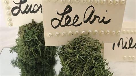 diy dollar tree moss place card holders diy wedding