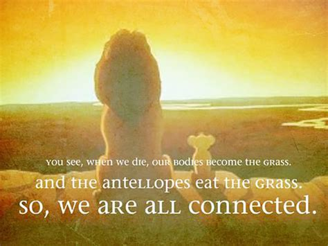 Lion King Quotes We Are All Connected