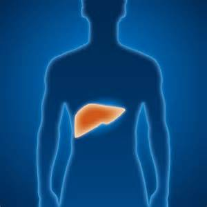 Hep B: Facts and Stats - Join Jade  Hepatitis Cirrhosis