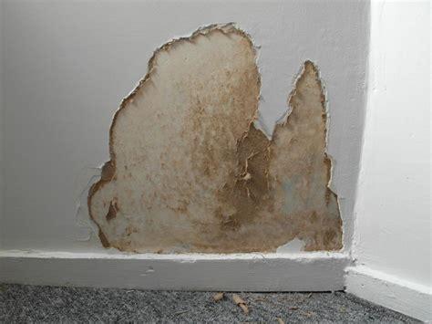 comment reparer un mur interieur humide comment r 233 parer un mur placo