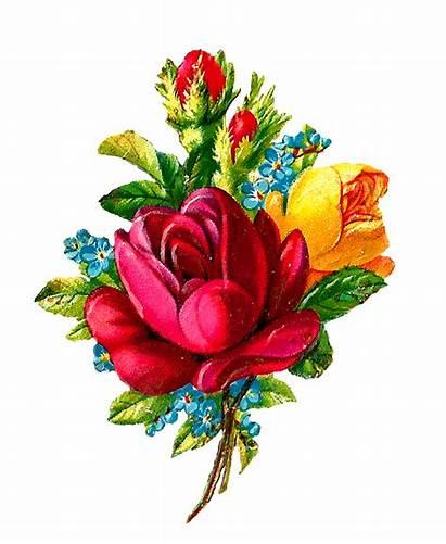 Flower Rose Digital Clip Bouquet Clipart Roses
