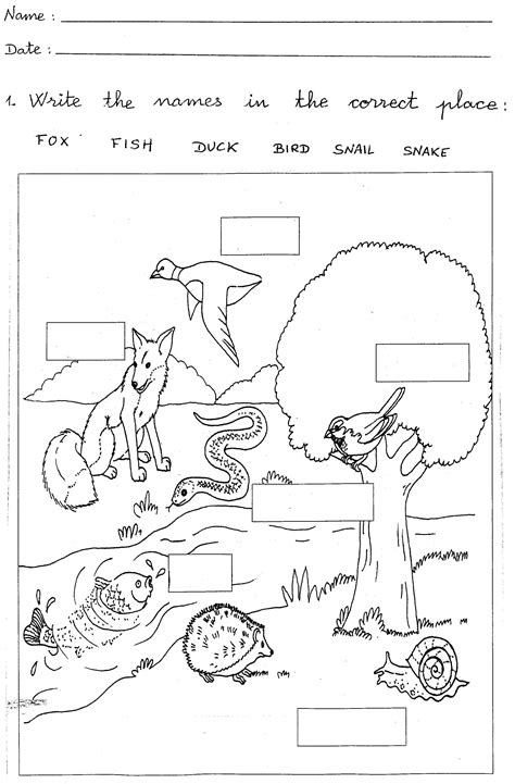 1st Grade Worksheets To Print  Learning Printable