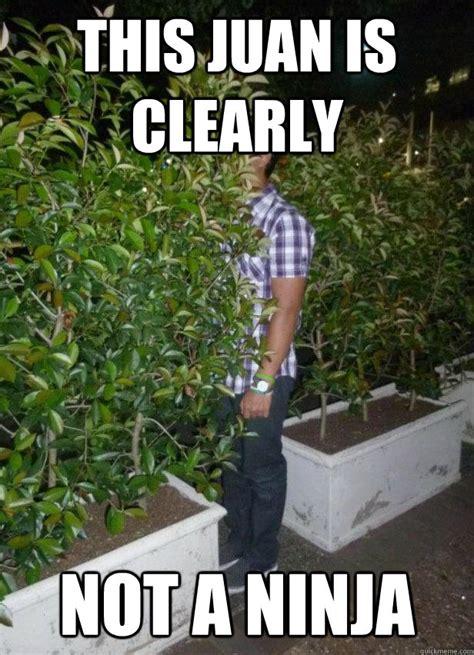 Ninja Memes - indian ninja memes quickmeme