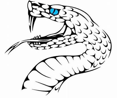 Snake Drawing Face Designs Tattoo Clipart Wood