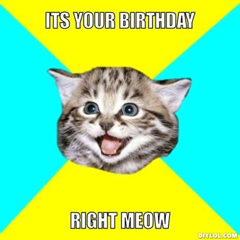 Meme Cat Birthday - memes for gt funny birthday cat memes thoughtful ideas pinterest birthday cats and cat
