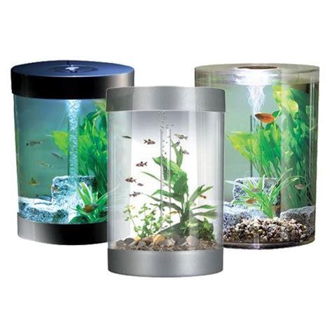 aquarium poissons chez wanimo