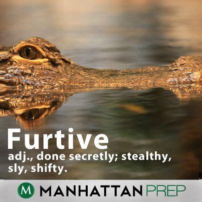 furtive | Vocabulary | Pinterest