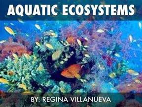aquatic ecosystems  regina villanueva