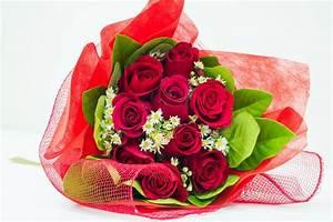Image Gallery nice flower love