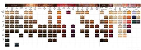 schwarzkopf igora color chart expert hair  beauty