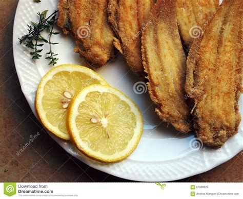 sole cuisine venetian cuisine fried sole stock photo image 67699625