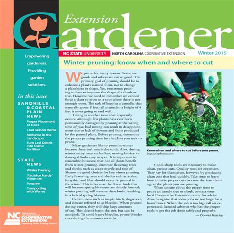 gardening newsletter extension gardener newsletter