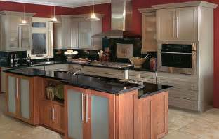 ideas for kitchen remodel kitchen remodel ideas with diy project trellischicago