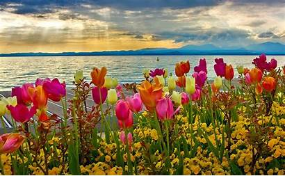 Spring Wallpapers Season Screensavers Screensaver Wallpapersafari