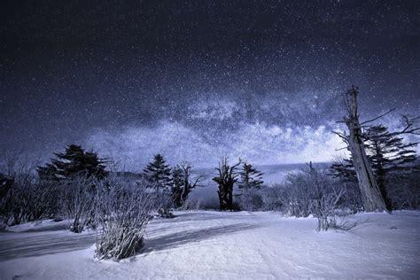 Nature Landscape Night Star Sky Milky Way Snow Winter Tree