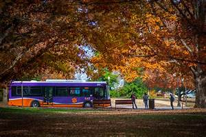 Clemson University named a Tree Campus USA School by Arbor ...