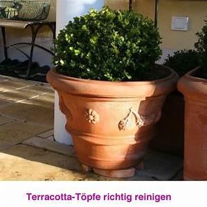 Terracotta Töpfe Obi : terracotta t pfe reinigen gemeinsam im garten terracotta topf terrakotta und terrakotta t pfe ~ Orissabook.com Haus und Dekorationen