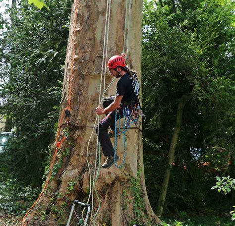 chambre agriculture midi pyr駭馥s rencontre regionale d 39 arboriculture 2016