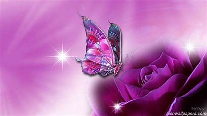 Butterfly Backgrounds Animated Purple