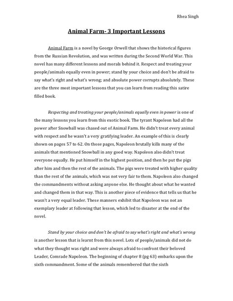 important lessons essay