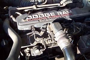 1993 Dodge Turbo Diesel 12valve Pickup With Five Speed