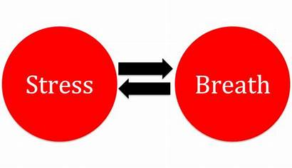 Stress Relationship Breath Breathing Patterns Poor