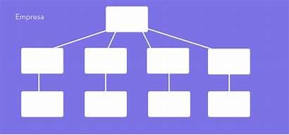 Organograma Empresa Um Vertical Organogramas Exemplo Template