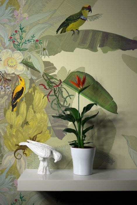 jungle birds wallpaper design interior design home decor