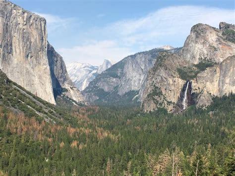 Yosemite Valley Floor Tour, Yosemite National Park, Ca