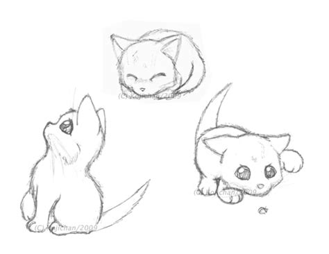 sketches playful kittens  kojichan  deviantart