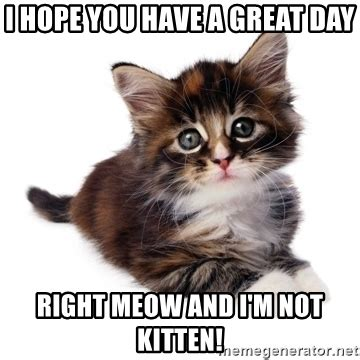 Have A Great Day Meme - i hope you have a great day right meow and i m not kitten fyeahpussycats meme generator