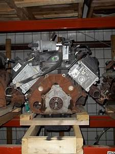Ford Crown Victoria Engine  4 6l  Vin V  8th Digit  Flex