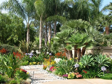 san diego landscape ideas for the new homeowner c h